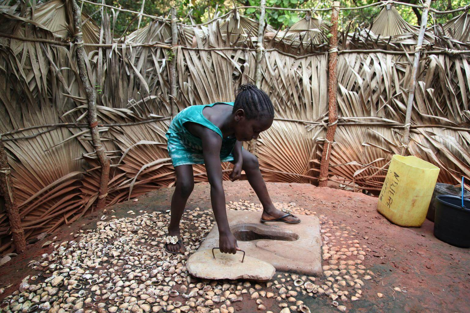 Imagen Día Mundial del Retrete: el saneamiento como derecho humano básico